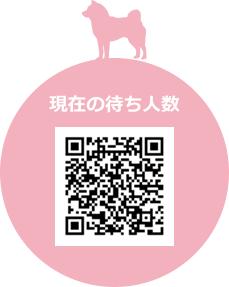 長崎市の動物病院 たけがわ犬猫病院